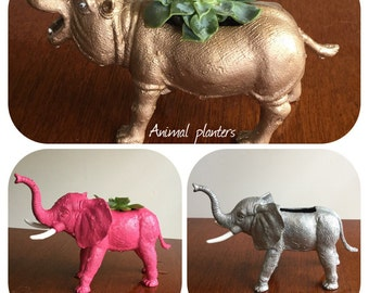 Animal succulent planters