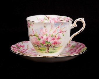Royal Albert Blossom Time Bone China Teacup & Saucer