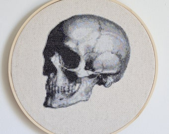 Anatomical Skull Cross Stitch Pattern