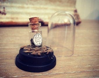 Deadly Night Shade - Miniature Bottle in a Dome - Potions & Spells - Curiosity  - Macabre Oddity - Oddities - Witchcraft - Curio - witch