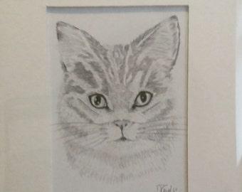 Miniature cat drawing