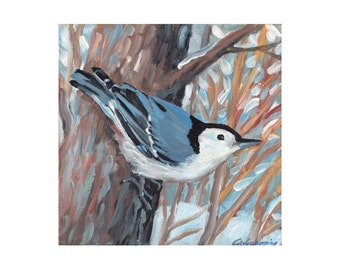 Nuthatch in Winter, limited edition art print