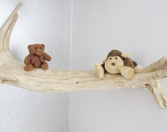 Unique piece of driftwood / Corner shelf