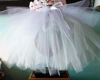 Pink Princess crown and tutu