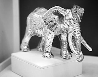 Elephant silver