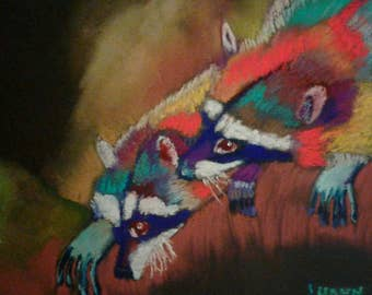 Raccoons Glory