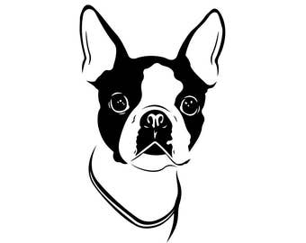 Boston Terrier Dog Graphics SVG Dxf EPS Png Cdr Ai Pdf Vector Art Clipart instant download Digital Cut Print File Cricut Silhouette Decal
