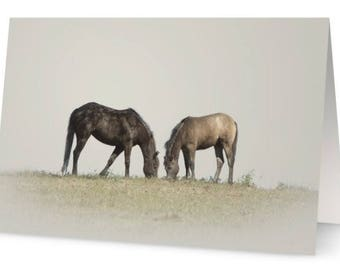 Storm's Sanctuary Horse Rescue Greeting Cards featuring Pictures of our Horse Rescues