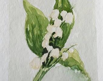 Watercolour thrush