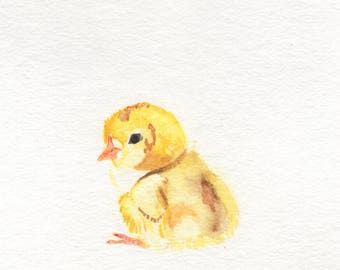Little Yellow Chick Watercolor Painting