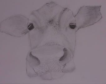Bespoke sketched picture of a cow