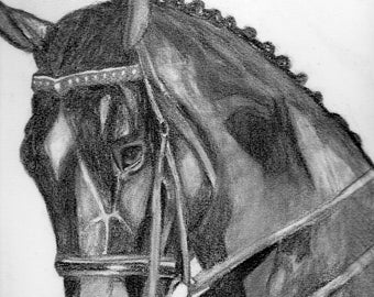 Original  horse drawing
