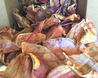 Pig Ears 100 Pack - Made in the USA - Full Large Pig Ears