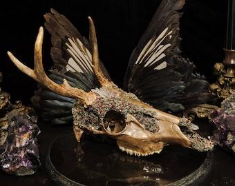 Deer Skull * Crystallized Skull * Animal Skull Decor * Real Animal Skull * Animal Bones * Taxidermy * Animal Skull * Embellished Skull *