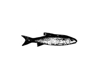 realistic FISH unmounted rubber stamp, men, masculine, Father's Day, bullet or art journaling, Sweet Grass Stamps No.14