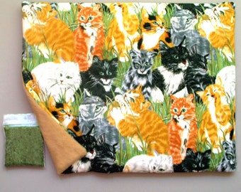 Catnip Mat and Catnip  Cats in Grassy Field Refillable Reversible