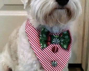 Collar Tuxedo style for dogs Christmas stripes or Halloween design  Holiday pet photo props for Instagram Twitter Pinterest