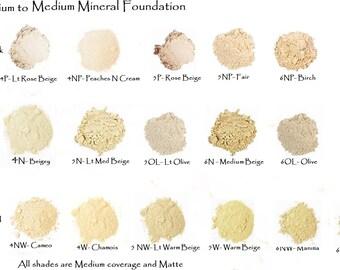 5 Sampler Set - Mineral Foundation Lt Medium to Medium - 5 Shades in Mini Ziplocks - Free shipping