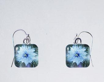 Nigella/Love in a Mist Glass Tile Earrings
