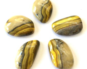 Gemstone Cabochon Bumble Bee Jasper Free Form Parcel FIVE CABS