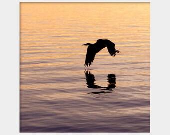 Heron Silhouette Photo, Bird Silhouette, Coastal Bird Photo, Great Blue Heron Photo, Sunset on Water, Bird Flying Over Water, Water Fowl Art