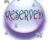 Reserved for Courtney - Small Tyche Cello Fairy Wings