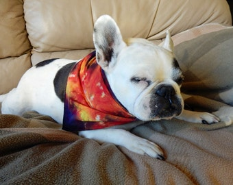 Multicolor Tie dye Dog or Human Bandana Hand done-Each one is different-Carla Smale
