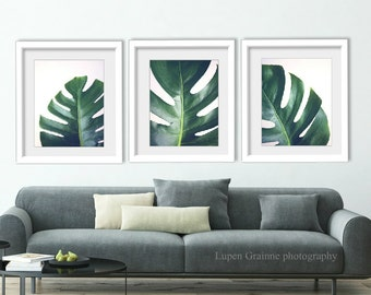 "Tropical Leaves nature wall art decor - botanical prints - dark green tropical leaves photographs 11x14 8x10 ""Ceriman Leaves Set of Three"""