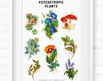 Psychotropic Plants, Home Decor, Wall Art, Art Print, Wall Decor, Giclée Print, Botanical Print, Vintage Botanical, Botanical Art, Flora