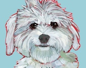 Coton de Tulear No. 1 - magnets, coasters and art prints
