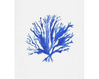 Sea Coral Watercolor Print