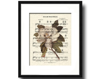 Sugar Magnolia Sheet Music Art Print, Grateful Dead Song Art Print, Southern Magnolia