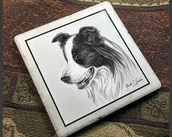 Border Collie Dog Fine Art 6 inch Tile Trivet