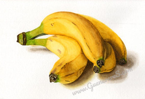 That's Bananas watercolor still life original painting