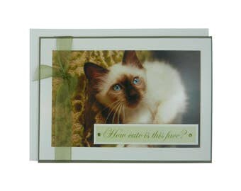 Handmade Cat Greeting Card - How cute is this face? - blank cat notecard - cat lover gift - cat lover card - blank cat greeting card