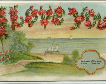 I Love You Language of Flowers Asters 1909 postcard