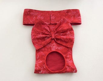 Female Dog Diaper - Britches - Dog Panty / Panties-Red with Pink - Available in all Sizes