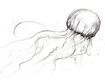 Australian Box Jellyfish Giclee Print