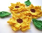 Custom order for Judit - crochet appliques