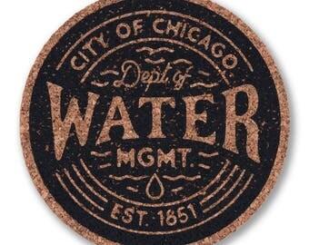Chicago Water Management Coaster