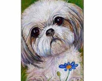 Custom Pet Portrait or  Gift Certificate Original oil Pastel Painting  Cat  Dog animal art custom pet portrait