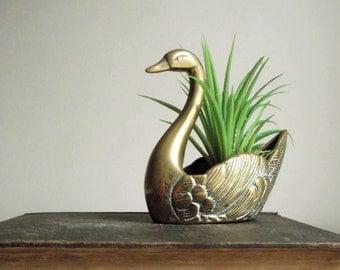 Brass Swan Planter , Brass Swan Succulent Planter , Small Swan Cactus Pot , Mid Century Modern Brass Decor