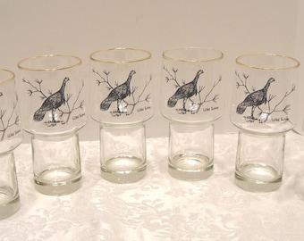 Vintage SET of 6 Wild Turkey Pilsner Beer Glasses ~ Black Wild Turkey Design