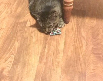 Cat Toy, Catnip square  - Organic -  Kitty play toy -
