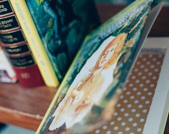 Secret Hollow Book Safe - Nancy Drew
