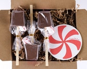 Holiday Peppermint 3-Pack of Ticket Hot Chocolate Sticks in Gift Box