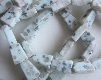 Sesame Jasper Trapezoid Beads 12x9mm 14 Beads