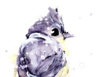 Bird Art Print, 16 x 12 Bird Art