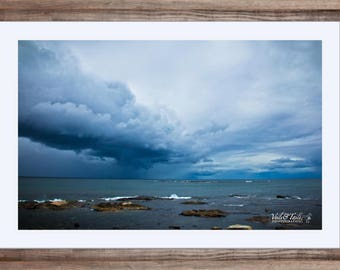 New England Storm - Nature Photography - Wildlife Photography - Hampton, New Hampshire