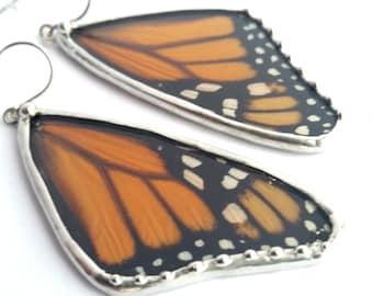 Large Monarch Butterfly, Real Butterfly, Butterfly Wing Earrings, Butterfly Jewelry
